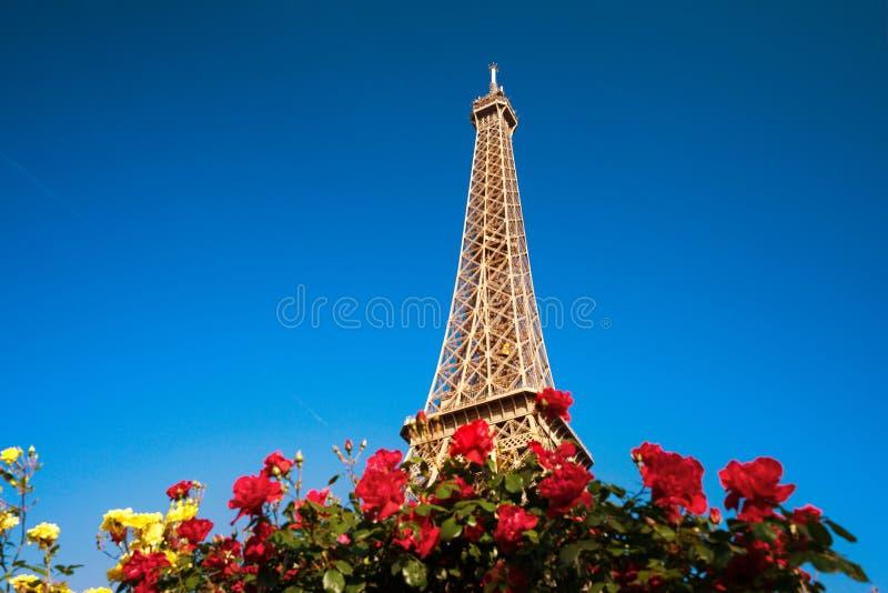 Den soliga morgonen och Eiffel står hög, Paris royaltyfria foton