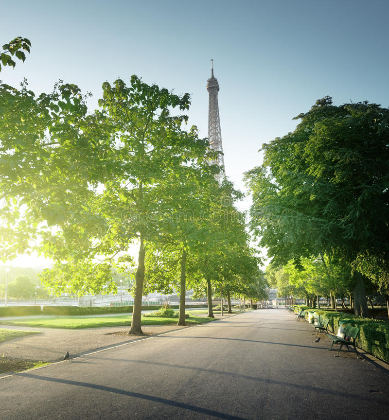Den soliga morgonen och Eiffel står hög, Paris royaltyfria bilder