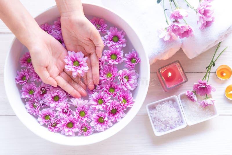 Den Spa behandling och produkten för kvinnlig fot och manikyr spikar brunnsorten med den rosa blomman för kopplar av och sund oms arkivbilder