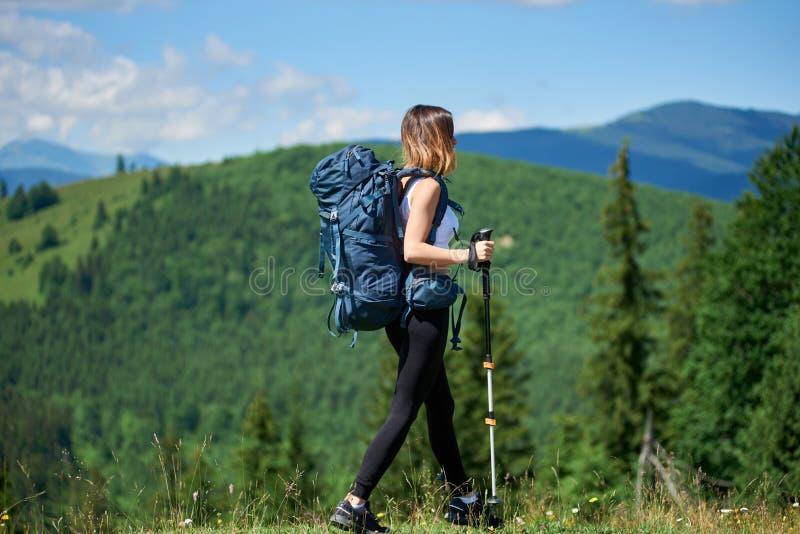 Den sportiga kvinnafotvandraren med ryggsäcken och trekking klibbar att fotvandra i bergen royaltyfri foto