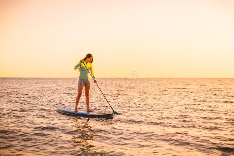Den sportiga unga kvinnan står upp skoveln som surfar med härliga solnedgång- eller soluppgångfärger royaltyfria foton