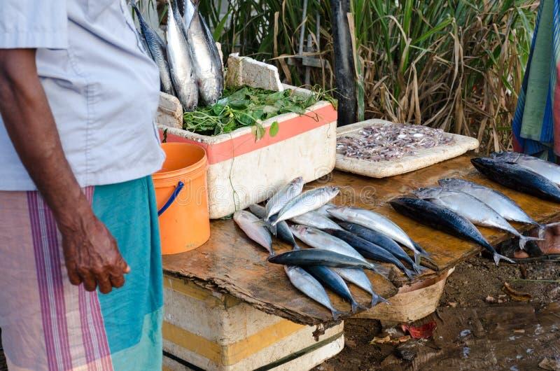 Den srilankesiska fiskhandlaren i saronger säljer fisken i morgonmarknaden i Weligama royaltyfri bild
