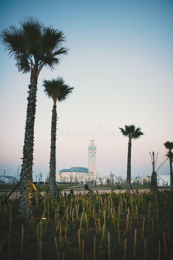 Den största moskén i Marocko under en solnedgång hassan ii moské Härlig solnedgång i Casablanca arkivbild