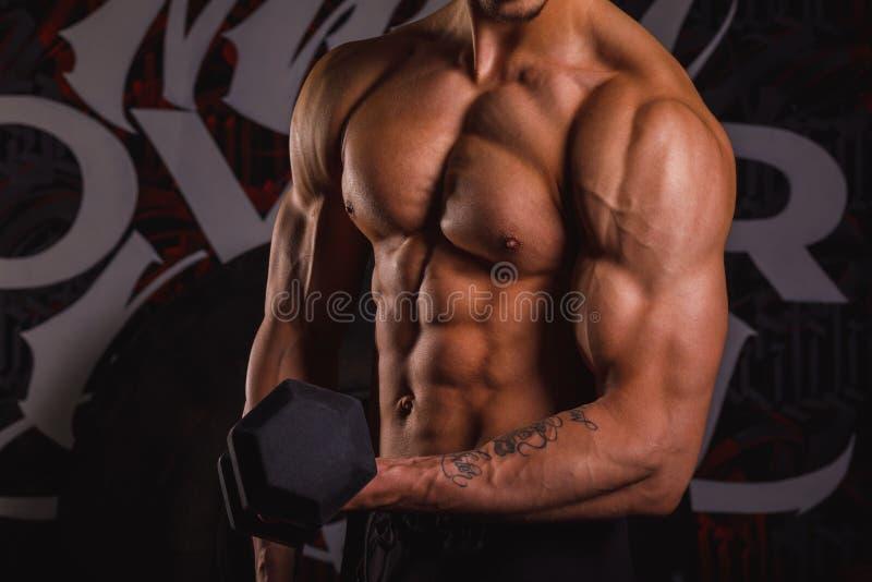 Den starka idrotts- grabben, med den kala bröstkorgen, pumpar bicepshänder med hantlar Inomhus i idrottshallen Närbild royaltyfri foto
