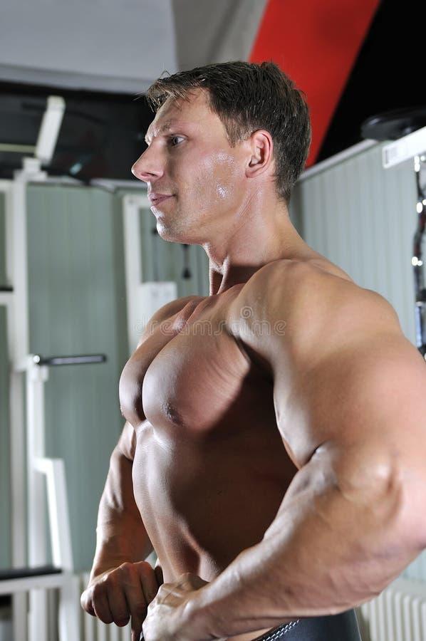 Den starka mannen fungerar ut i idrottshall royaltyfria bilder