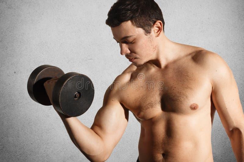 Den starka muskulösa kroppsbyggaren gör bicepsövningar med hantlar i händer som är involverade i den sunda aktiva livsstilen som  royaltyfria bilder