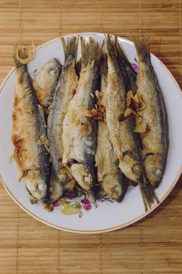 Den stekte fiskströmmingen ligger på en platta på en bambuservett royaltyfri bild
