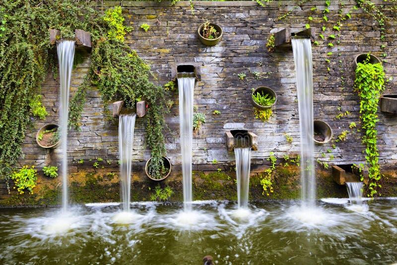 Den steniga väggen med små vattenfall i Planten FN Blomen parkerar royaltyfria bilder