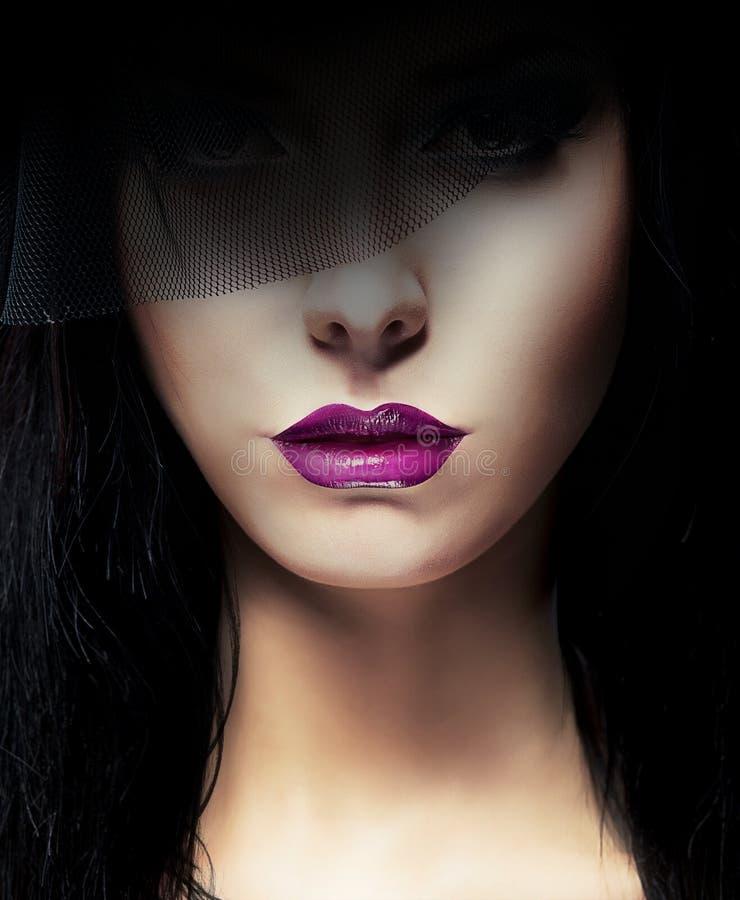 Den stilfulla aristokratiska kvinnan med mörker skyler royaltyfri foto