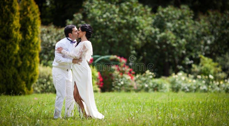 Den stiliga romantiska brudgummen som kysser den nyligen lyckliga bruden parkerar in arkivfoto
