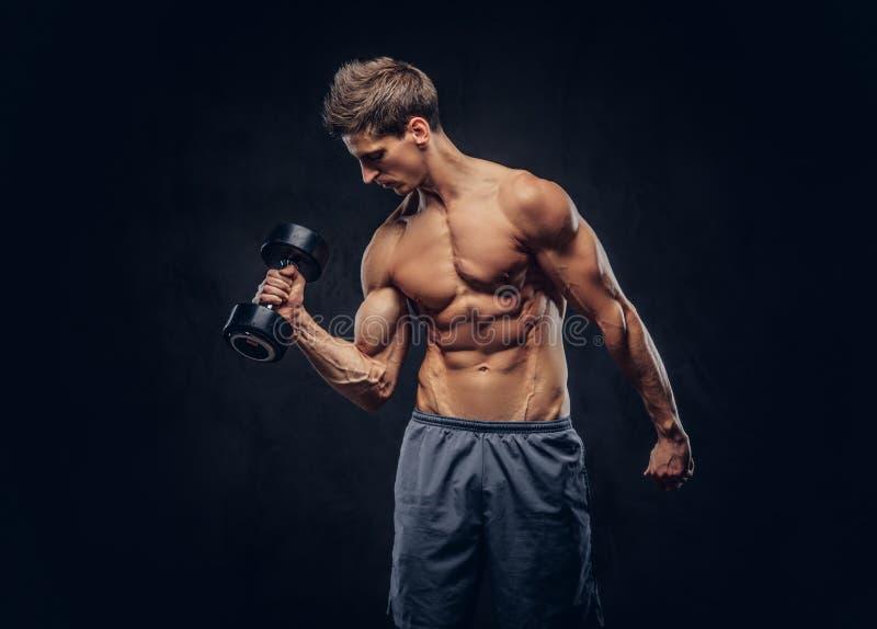 Den stiliga shirtless mannen med stilfullt hår och den muskulösa ectomorphen förkroppsligar göra övningarna med hantlar fotografering för bildbyråer