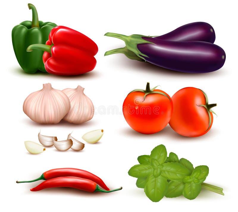 Den stora färgrika gruppen av grönsaker. stock illustrationer