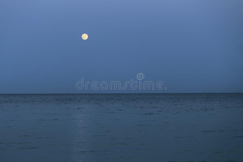 Den stora fullmånen stiger ovanför havet på skymning arkivbilder