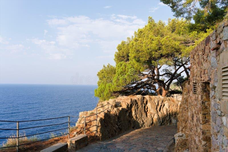 Den stora havssikten med paraplyet sörjer på en klippa i parkerar i Spanien royaltyfri fotografi