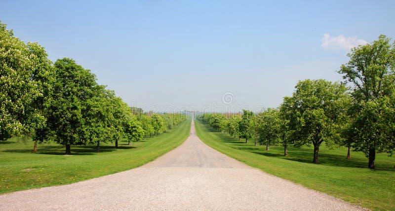 den stora långa parken går windsor royaltyfria foton