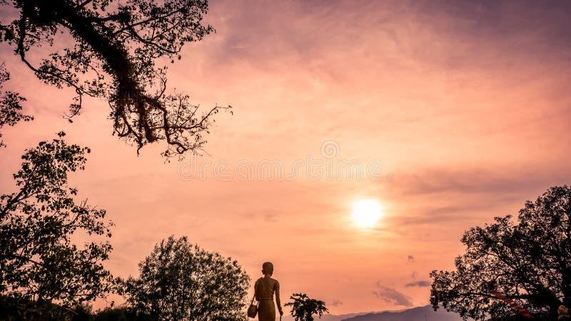Den stora träd- och skönhetsolnedgånghimlen i natur royaltyfri bild
