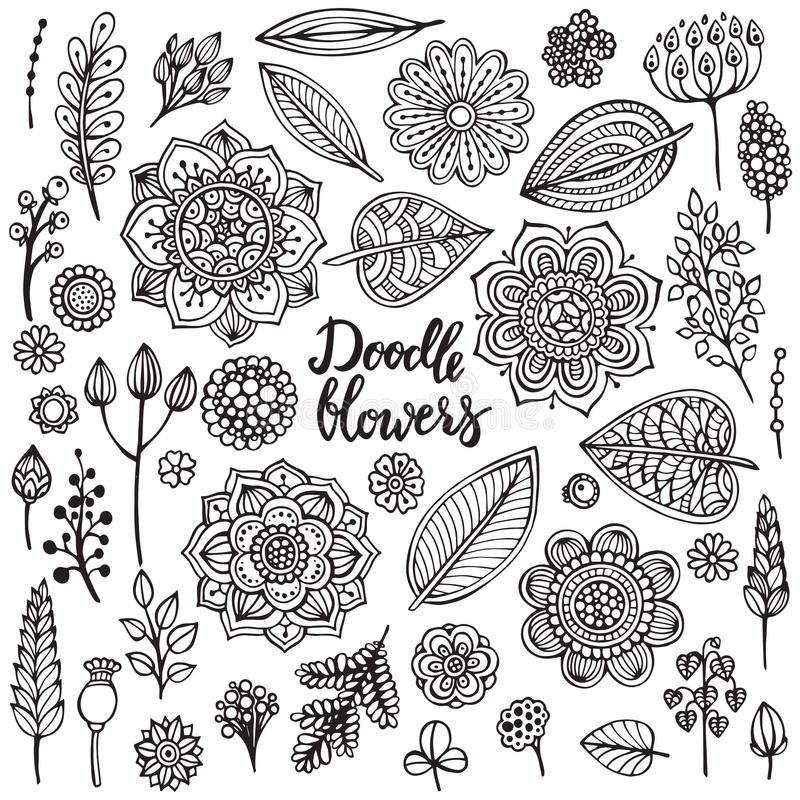 Den stora uppsättningen av handen drog vektorn blommar, filialer, sidor royaltyfri illustrationer