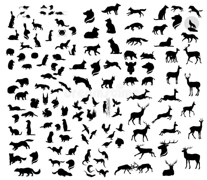 Den stora uppsättningen av konturer för skogvektordjur stock illustrationer