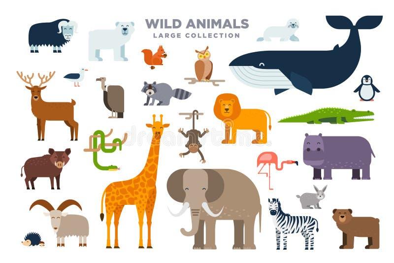 Den stora uppsättningen av vilda djur i plan design som isoleras på vit bakgrund Elefant lejon, val, giraff, sebra och vektor illustrationer