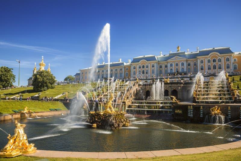 Den storslagna kaskaden av springbrunnar i Peterhof på solig sommardag, St Petersburg, arkivfoto
