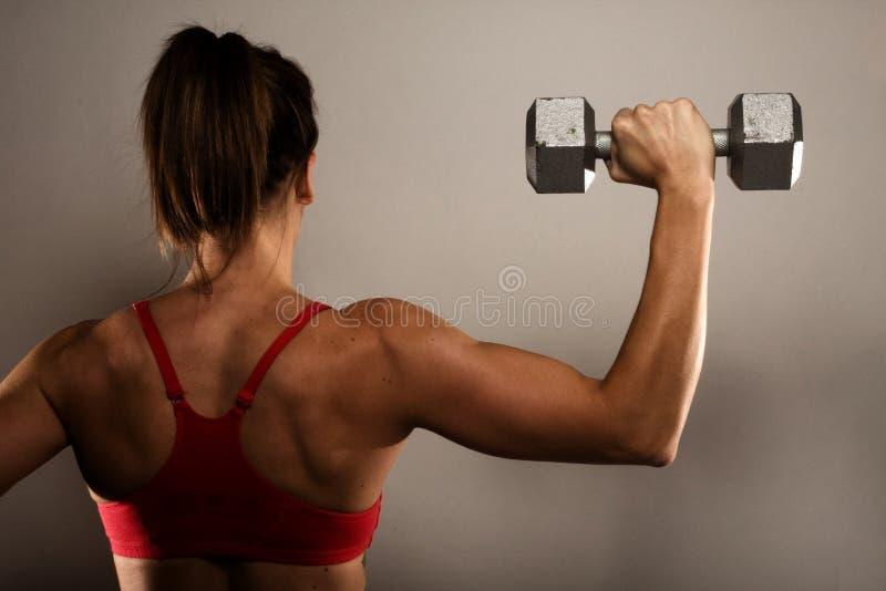 Den sunda konditionkvinnan som visar henne tränga sig in baksidt royaltyfri bild