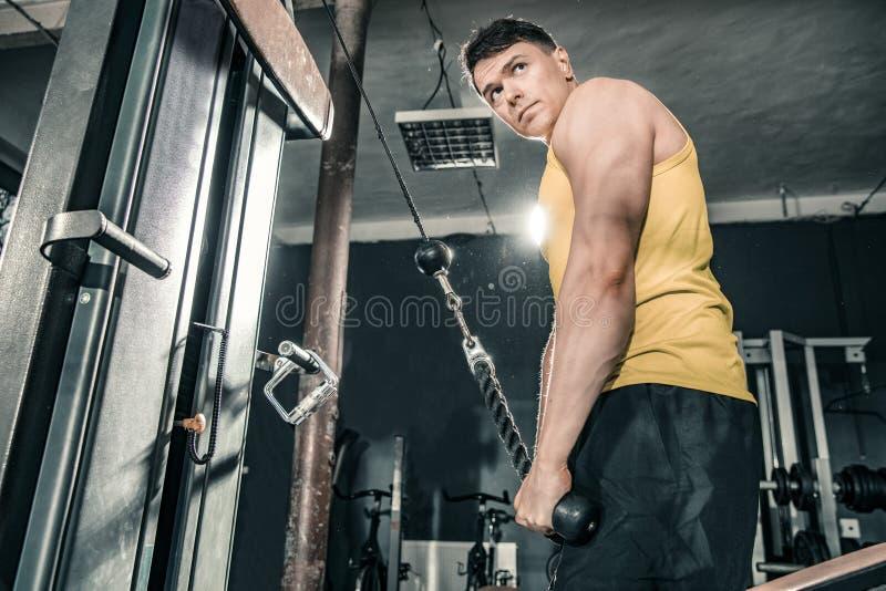 Den sunda mannen som utarbetar i idrottshallen som gör triceps, övar fotografering för bildbyråer