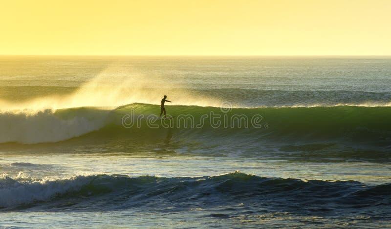 Den surfa meningen arkivbild