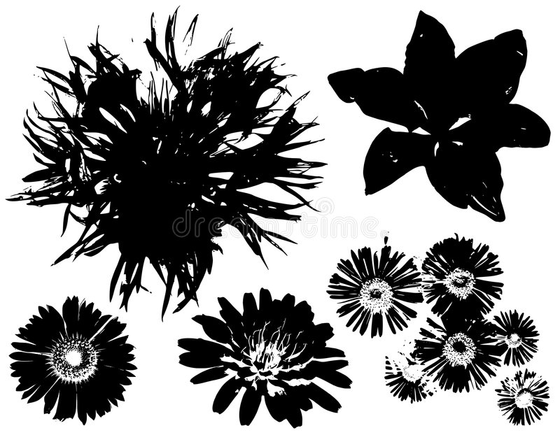 den svarta blomman skisserar vektorer stock illustrationer
