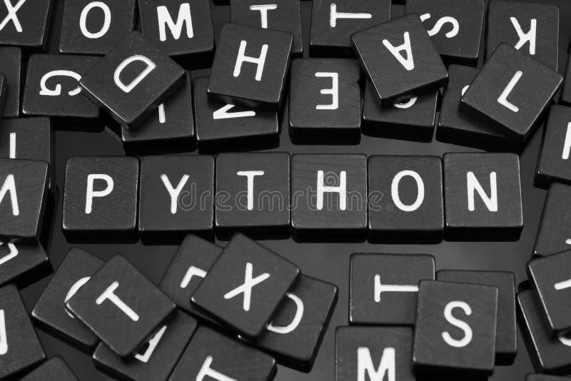 Den svarta bokstaven belägger med tegel att stava ordet & x22en; python& x22; arkivfoto