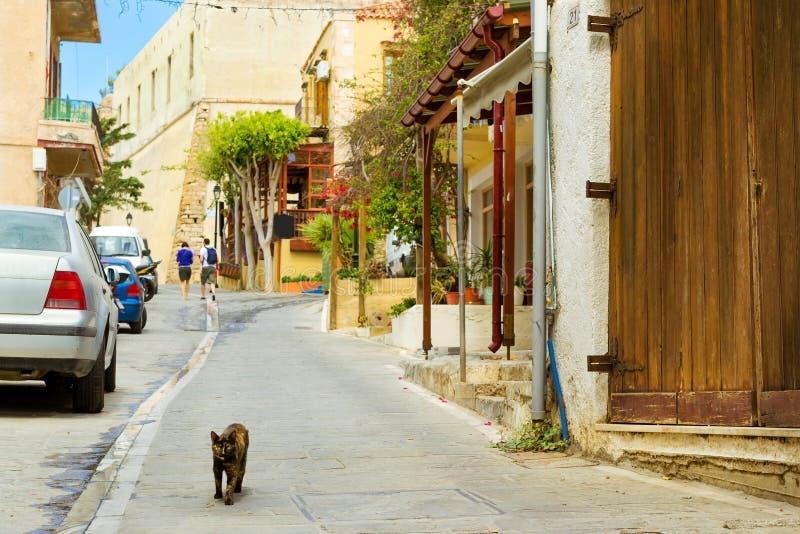 Den svarta hemlösa katten går crete greece rethymno arkivfoto