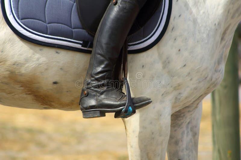 Den svarta kängan av ryttaren i stigbygeln drar åt på hästen, foten i stigbygeln royaltyfria foton