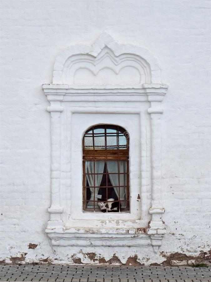Den svartvita katten sitter i fönstret av en vit gammal byggnad royaltyfri foto