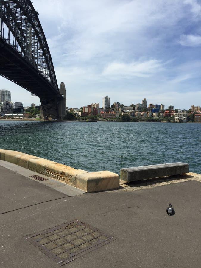 Den Sydney hamnen överbryggar arkivbild