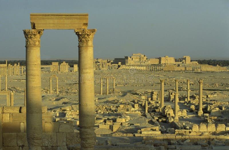 DEN SYRIEN PALMYRAROMAREN FÖRDÄRVAR arkivbild