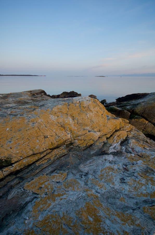 Den täckte gula ockran av laven vaggar på nötkreaturpunkt på solnedgången med Juan de Fuca Strait i avståndet fotografering för bildbyråer