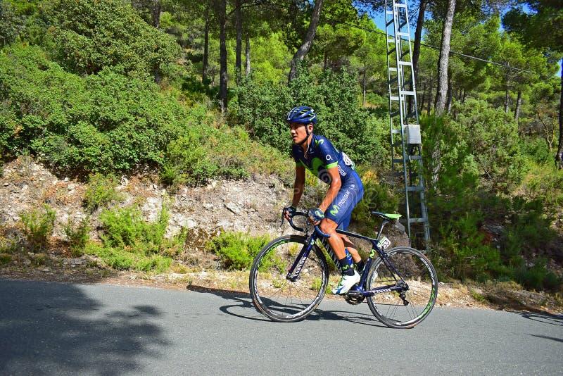 Den tävlings- cyklisten som är stående upp på, langer royaltyfria foton
