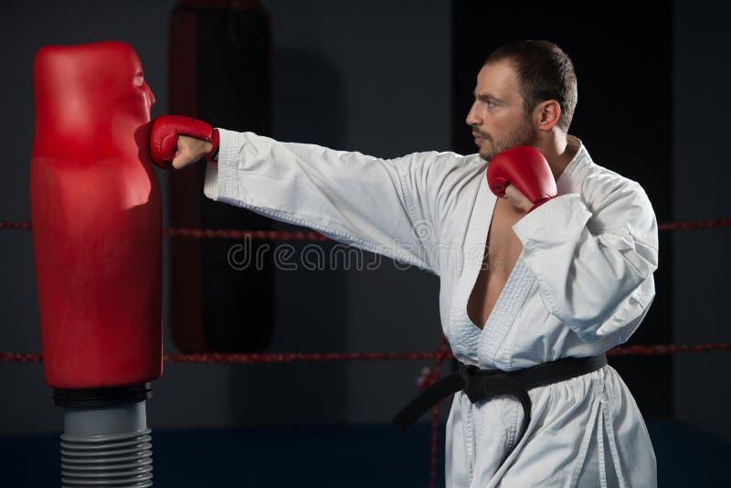 Den Taekwondo kämpen poserar arkivfoto