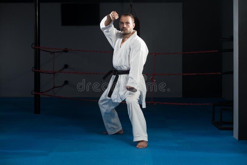 Den Taekwondo kämpen poserar royaltyfria bilder