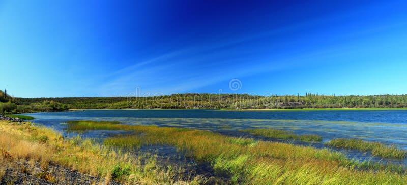 Den territoriella blomstrande sjön parkerar nära Yellowknife, Northwest Territories royaltyfria foton