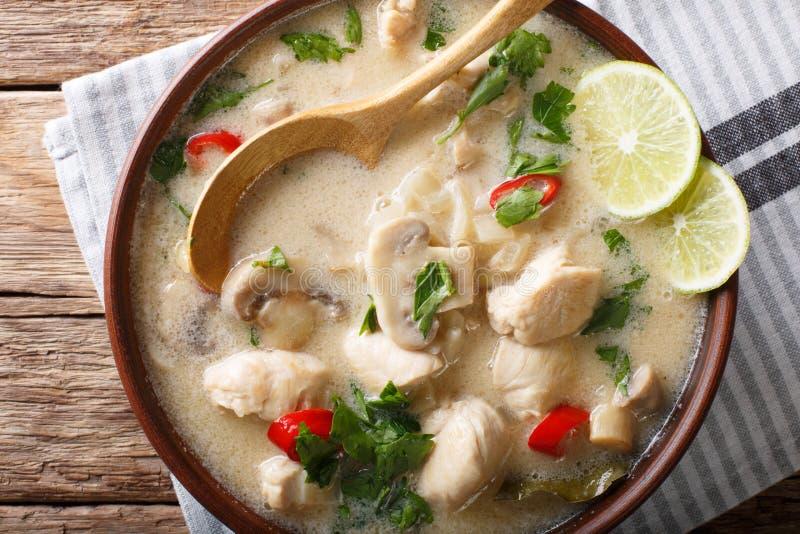 Den thailändska för den tom för feg soppa gaien khaen med kokosnöten mjölkar närbild i en bo royaltyfri bild