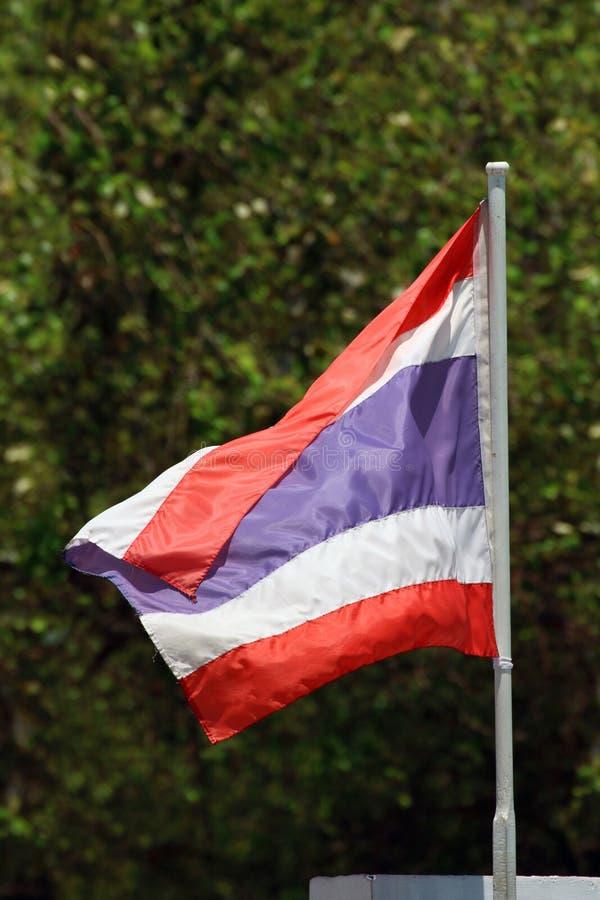 Den Thailand flaggan, sjunker thai på suddig naturträdbakgrund, den röda blåa vita flaggan Thailand fotografering för bildbyråer