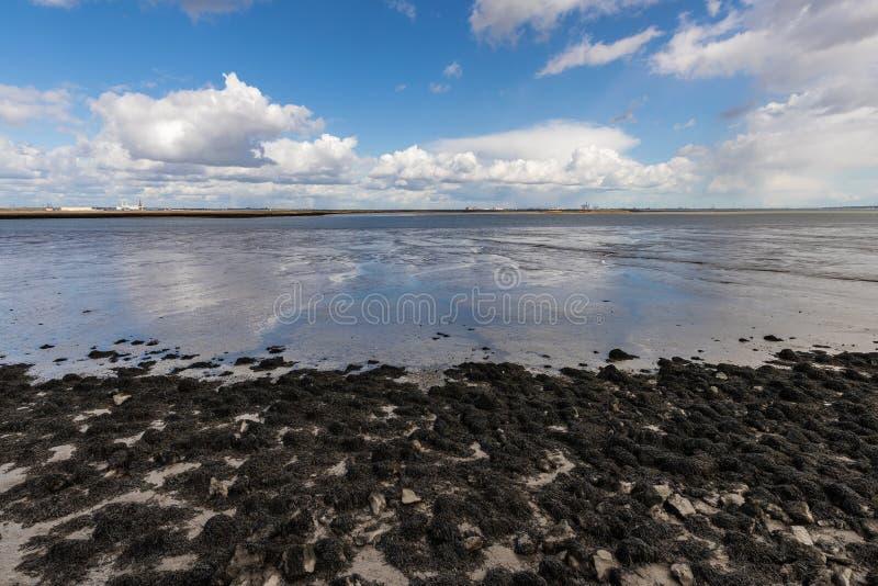 Den thames breda flodmynningen fotografering för bildbyråer