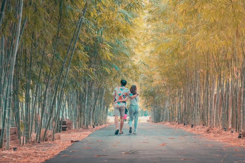 Den tillbaka sikten av lyckamannen och kvinnliga par som går handen - i - handen och nedgången som är förälskade längs bambu, par arkivfoton