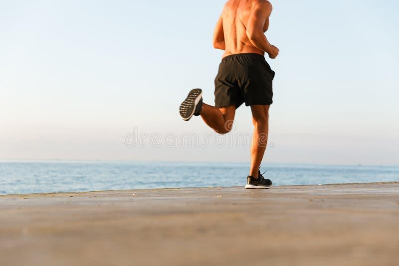 Den tillbaka sikten kantjusterade bild av en shirtless idrottsmanspring royaltyfri fotografi