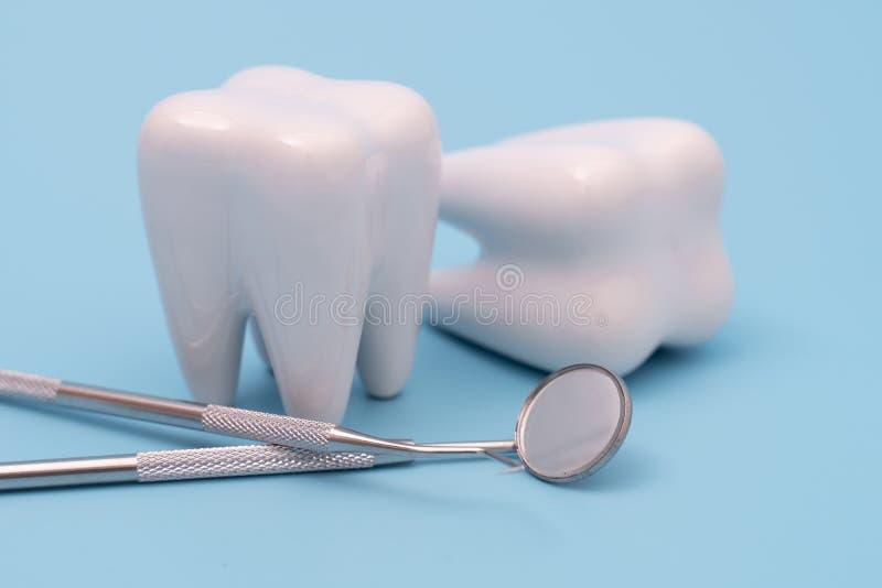 Den tionde modellen och tandläkarverktyget på blå arkivbilder