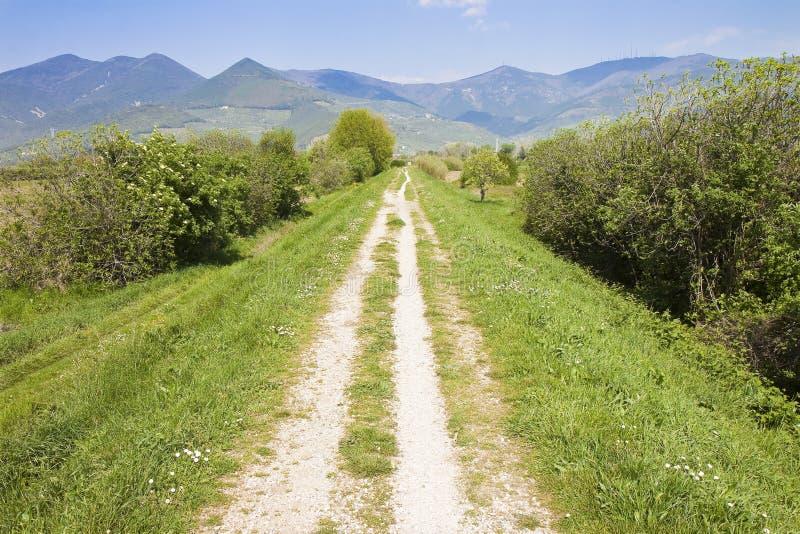 Den Tipical Tuscany landsvägen kallade 'den vita vägen 'Italien royaltyfri bild