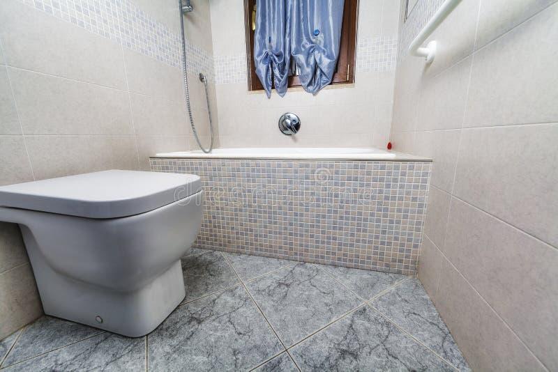 Den Toilette sikten med badar royaltyfria bilder