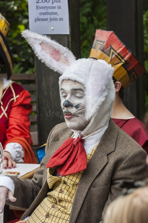 Den tokiga hattmakaretebjudningen Man i djur dräkt fotografering för bildbyråer