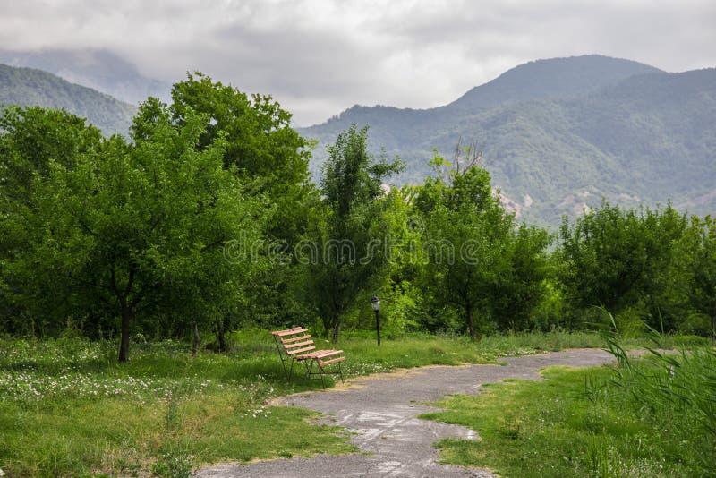 Den tomma bänken på parkerar nära dammet vid solig dag, bänk på sjön i den skogAzerbajdzjan naturen royaltyfri bild