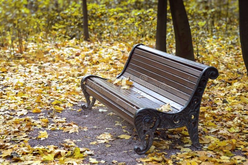 Den tomma ensamma träbruna bänken i staden parkerar, gula lönnlöv Höst nedgångsäsong, ledset lynne, ensamhet arkivbild